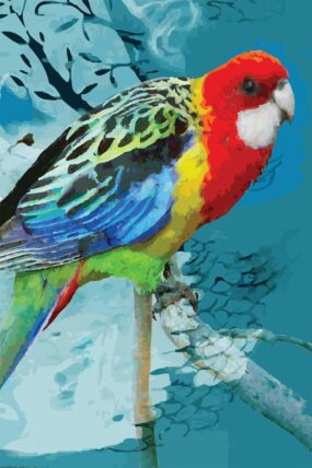GC06 Greeting Card Red Parrot