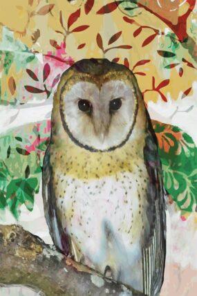 GC07 Greeting Card Barn Owl