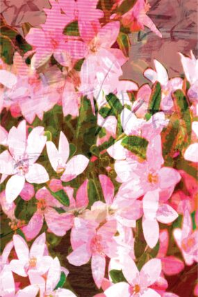 GC10 Greeting Card Flower Girl