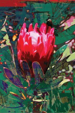 GC13 Greeting Card  Protea