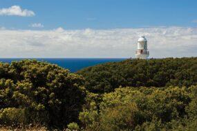V20 Post Card Lighthouse