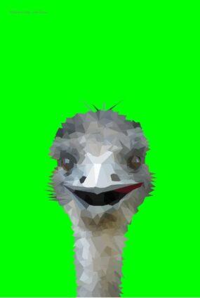 EMU-GREEN