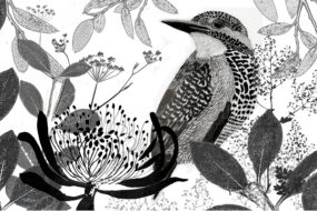 PLACEMAT SET KINGFISHER