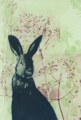 TEA TOWEL - WILD RABBIT